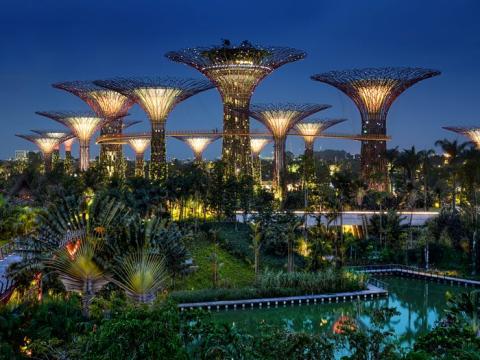 La distancia media de los viajeros que viajan en un solo viaje en transporte público en Singapur es de 7,3 kilómetros.