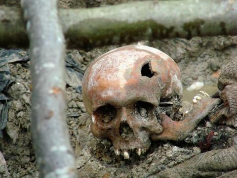 Calavera hallada en Srebrenica