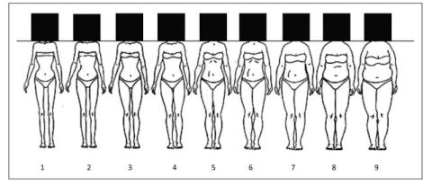 Este es el dibujo que los investigadores utilizaron en su estudio