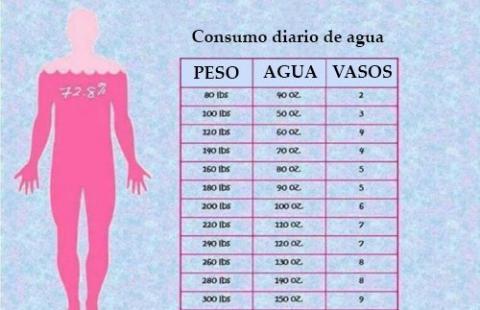 Infografía de cuánta agua beber al día
