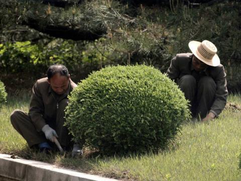 Dos norcoreanos trabajan en la zona desmilitarizada