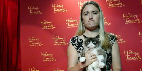 Grumpy Cat y su propietaria, Tabatha Bundesen, en Washington D.C. (EE. UU.) en septiembre de 2016.