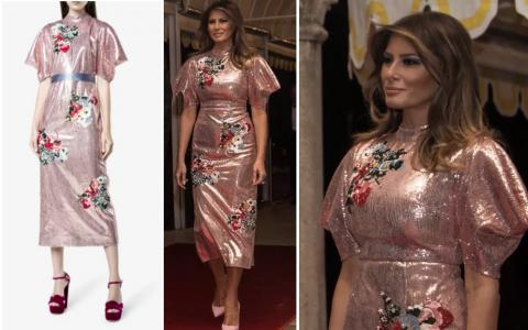 El vestido de Melania Trump para la Nochevieja de 2017 (en la web de Erdem y vestido por ella)
