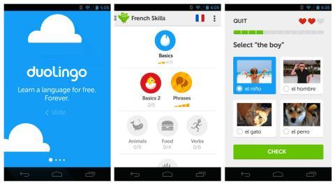 Aplicación de idiomas Duolingo