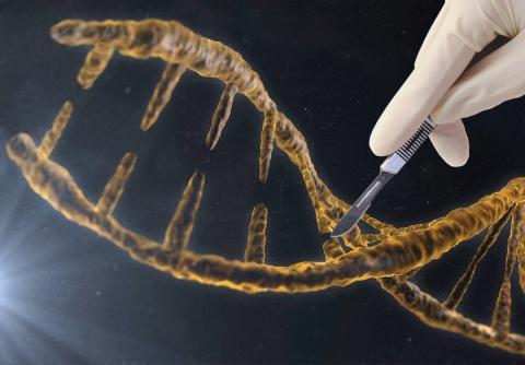 así funciona el CRISPR