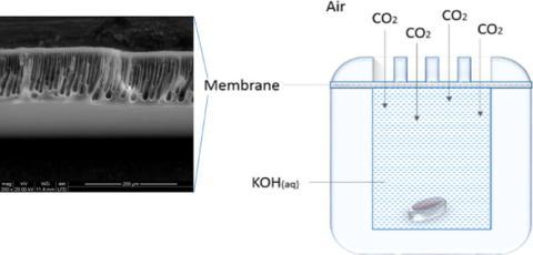 Detalle y esquema del prototipo que captura CO2.