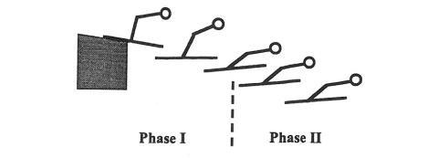"""Hay dos fases durante el vuelo en el salto de esquí. En la Primera Fase, el cuerpo del saltador adopta una posición rápidamente. En la Segunda Fase, el saltador completa la posición final creando la figura en """"V""""."""