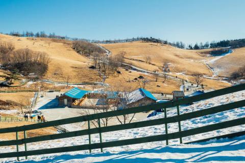 Una imagen del complejo olímpico de invierno en Corea del Sur