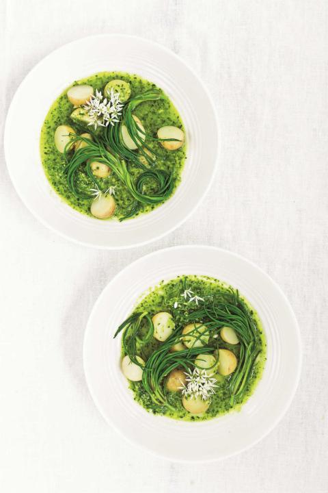 Sopa de hortalizas primavera.