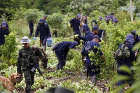 Un policía antidrogas escolta a los trabajadores durante una operación de erradicación en una plantación de hojas de coca cerca de San Miguel, al sur de la provincia del Putumayo, el 15 de agosto de 2012.