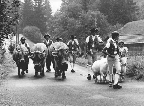 Pastores alpinos en Toggenburg, Suiza.