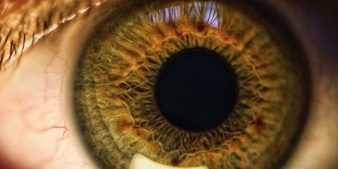 Primer plano de un ojo verde