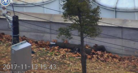 Soldado desertor abatido por sus compañeros en Corea del Norte.