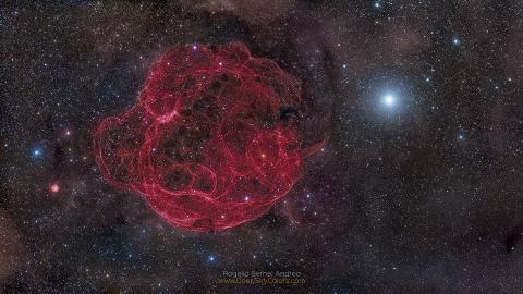 Tangled Stardust