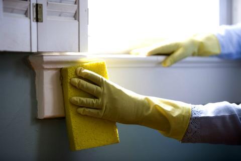 Limpiar con frecuencia todos aquellos lugares que no se suelen asear con tanta frecuencia en los que se suele acumular de agentes alergenos.