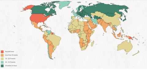 mapa por bajas de maternidad