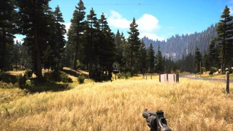 Imagen de una zona salvaje de Montana.