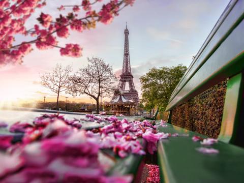 Vista de la torre eiffel en París
