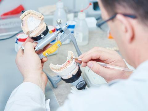 Prosthodontists