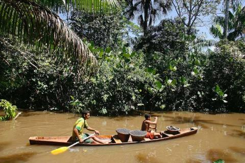 A small boat transports baskets with acai berries near Belem, northern Brazil.