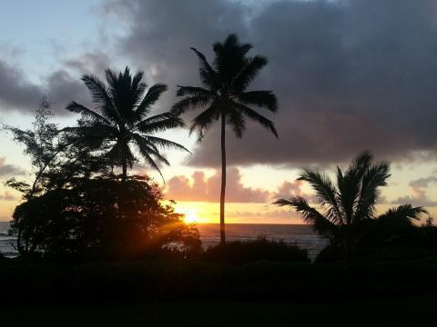kapaa hawai