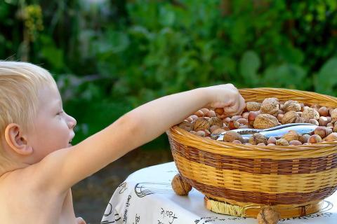 Un niño alcanza una cesta de nueces.