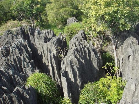 Reserva Nacional de Tsingy
