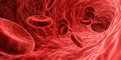 el tipo de sangre relacionado con probabilidad de muerte en traumatismos