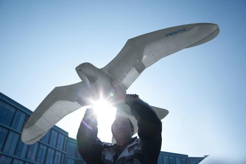 china desarrolla drones con forma de paloma