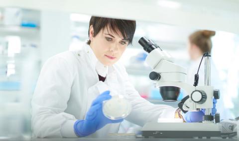 Investigadora científica