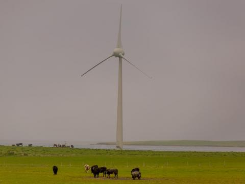 Part of the reason Microsoft chose Orkney was because the islands are a hub for renewable energy research.