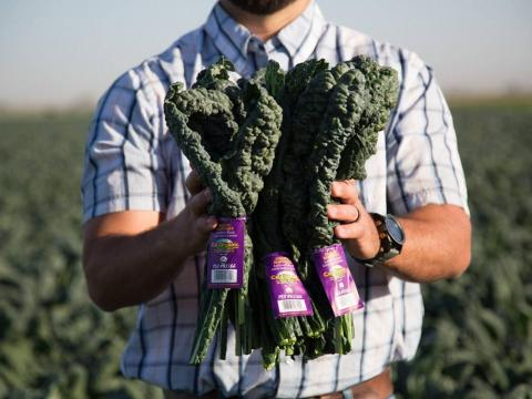 A cup of kale gives you nearly 700% of your daily allowance of vitamin K.