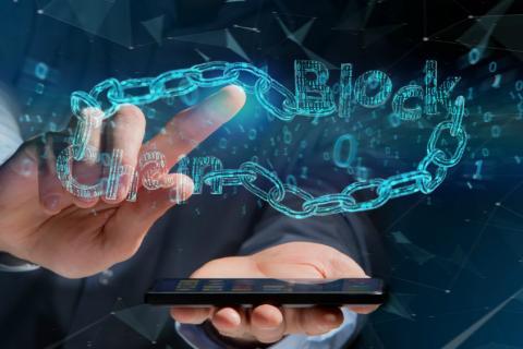 Lo cierto es que existen diferentes modalidades de despliegue o entrega de las cadenas de bloques, con distintas capacidades, enfoques y resultados.