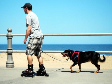 Hombre patinando con su perro