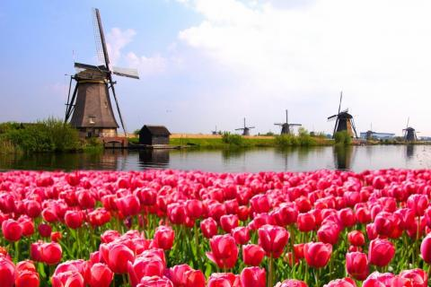 21. The Netherlands