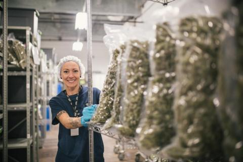 Canopy Growth, based in Canada, is the largest publicly traded marijuana grower in the world.
