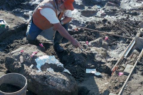 Algunos investigadores incluso creen que los humanos llegaron a Norteamérica antes de lo que se pensaba [RE]