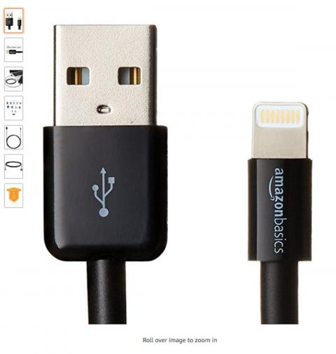 They also bought the Amazon Basics USB Lightning Cable.