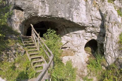 También hay más evidencias genéticas que muestran que los primeros humanos se entrecruzaron con otras especies como el Denisovans o el Neandertal [RE]