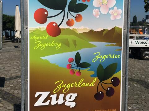 Zug is a big producer of kirsch, the cherry brandy.