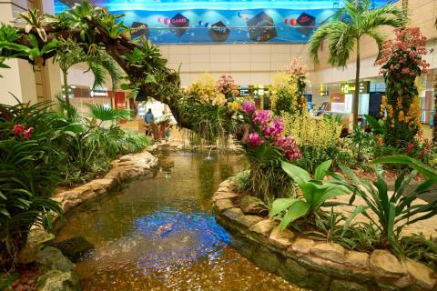 Interior del Aeropuerto Changi de Singapur.