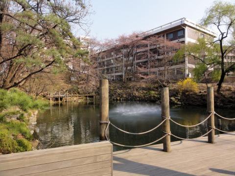 36. Seoul National University, South Korea — 80.6