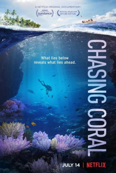 """Chasing Coral"" (2017)"