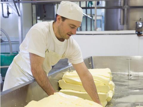 Cheddar cheese-making includes a process called 'cheddaring.'