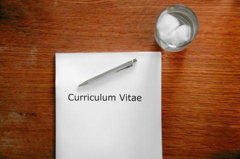curriculum , entrevista de trabajo