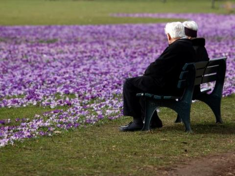 An elderly couple sit on a bench next crocus flowers in a park in Duesseldorf