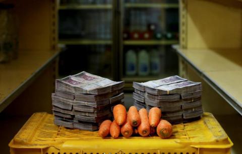 Zanahorias Bolivares