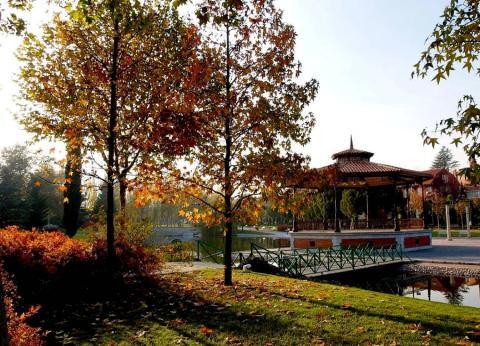 Parque de Pozuelo.