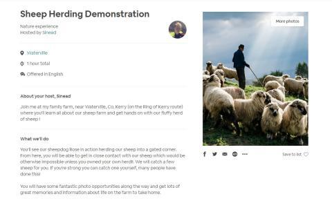 Una de las actividades que se ofrecen en Airbnb for Work.
