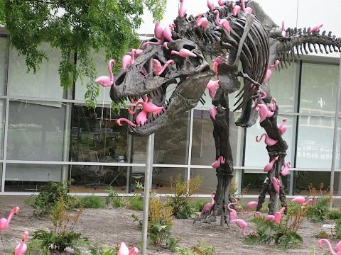 Dinosaurio lleno de flamencos